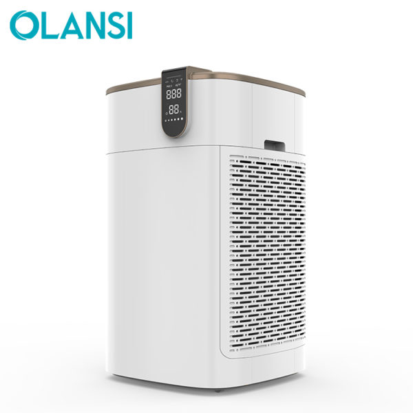 air purifier with ionizer humidifier